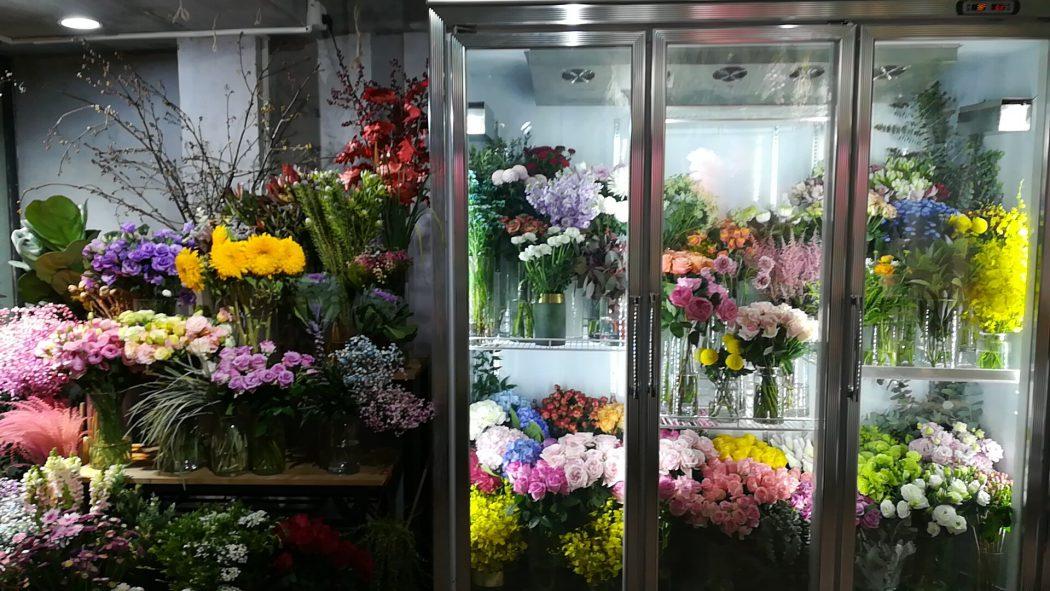 『鲜花24小时』优秀花艺师联盟品牌-【鲜花24小时】养护知识大全(花材叶材篇)的图片